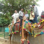 Vinove's 9th Annual Day-Out at PratapGarh Farms